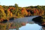 October river mist 2