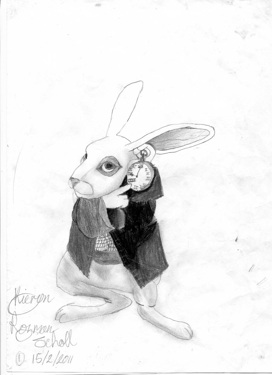White Rabbit Drawing By Ashalenorae Traditional Art Drawings Animals