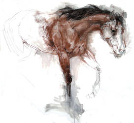 Horse by cabaree