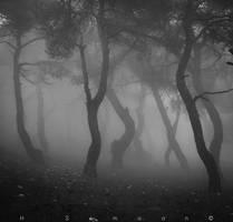 Silent Reveries by DamnedDeadBoy