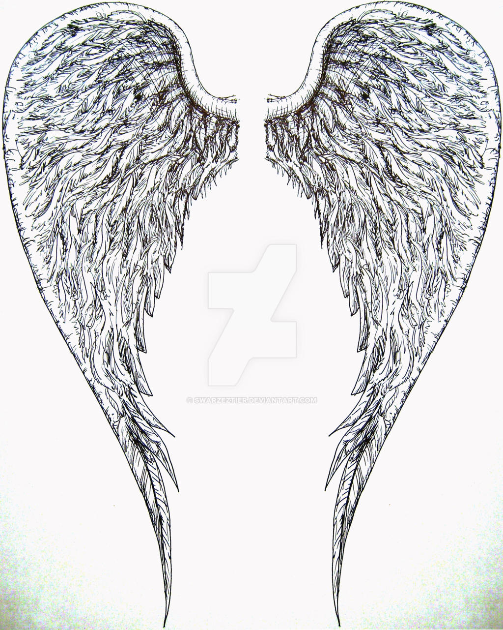 angel wings by SwarzezTier