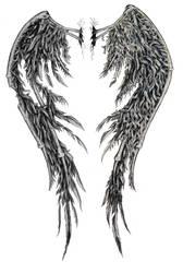 fallen angel wings edited by SwarzezTier