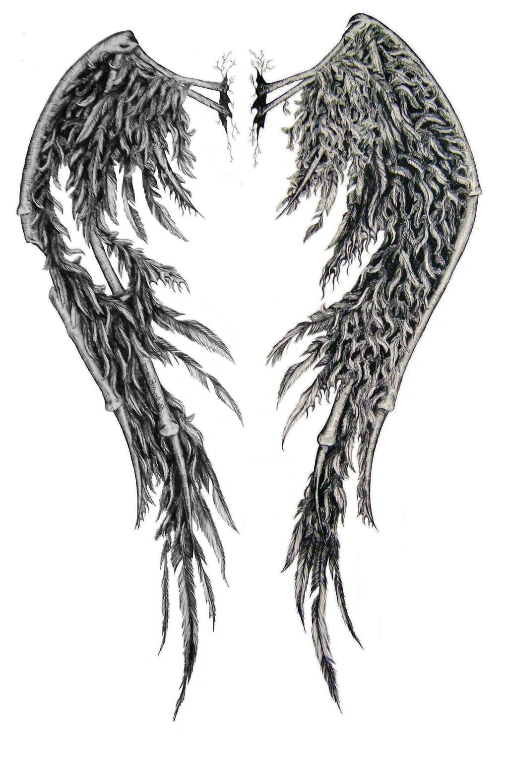 fallen angel wings edited by swarzeztier on deviantart