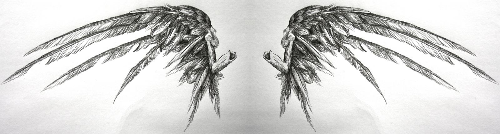another fallen angel wings by SwarzezTier