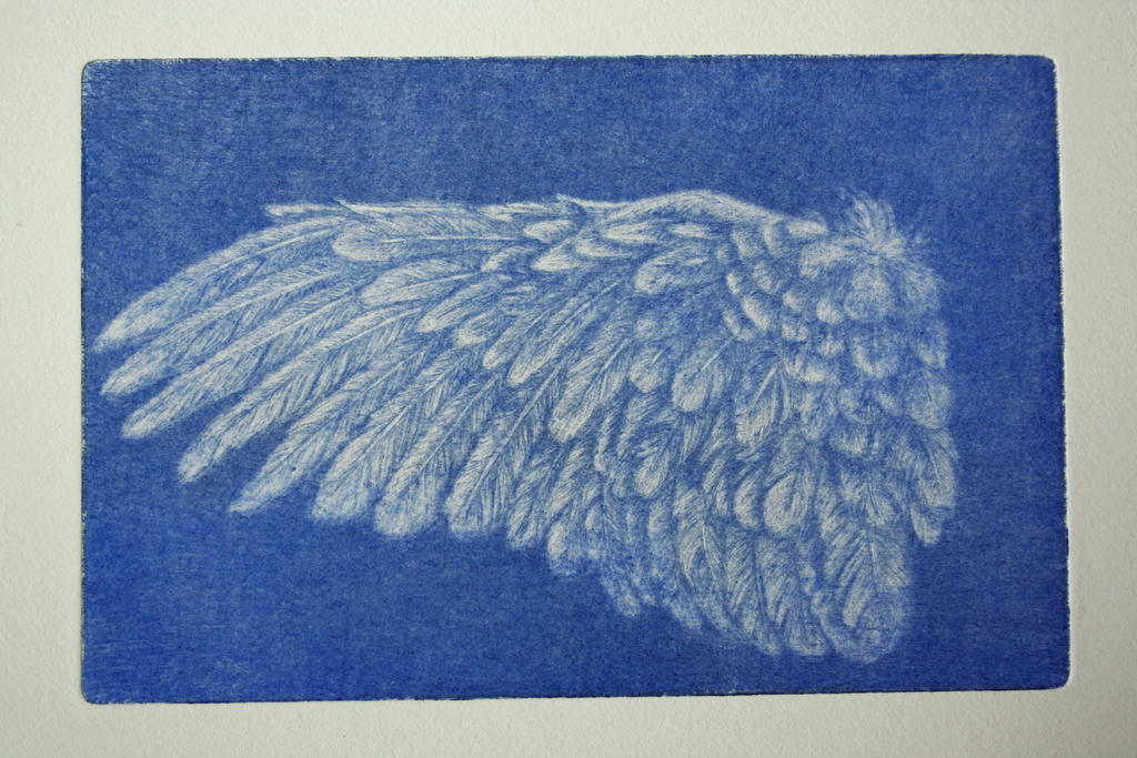 blue wing by SwarzezTier