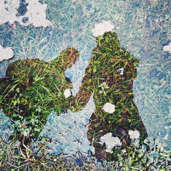 Reflections by nekochan7