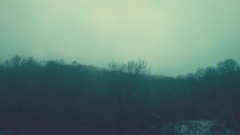 Foggy by nekochan7