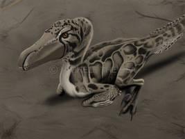 Velociraptor by puntotu