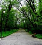 Park Saski in Lublin I