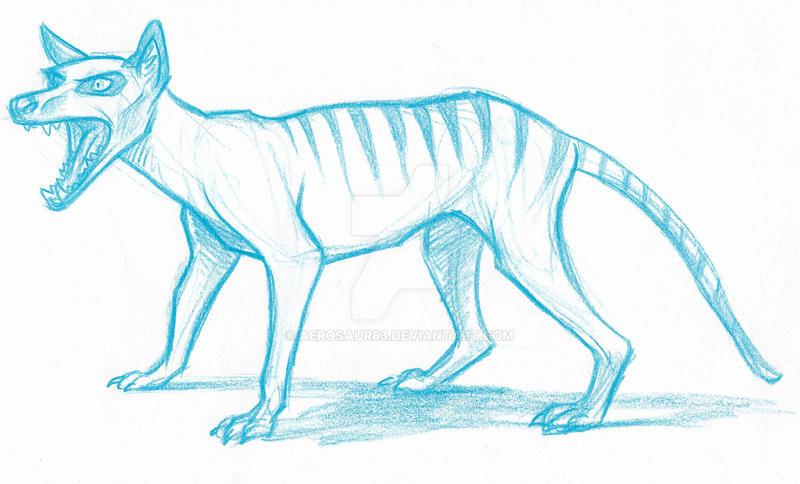 Thylocine Sketch by Aerosaur83