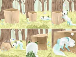 Noki and Box