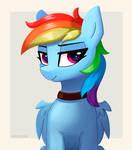 Rainbow Dash by Tritho