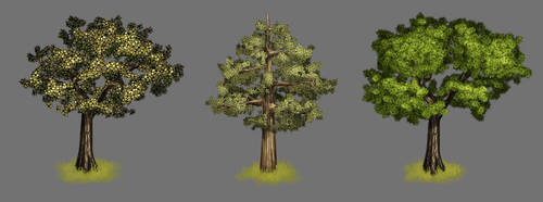 Trees by DanteRM