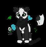 Panda Squib open!~