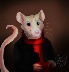The Mouse next door