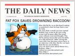 Fat Fox Saves Drowning Raccoon