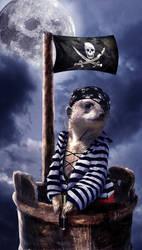Pirate Meerkat by JennLaa