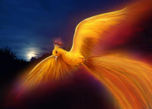 Golden Phoenix by JennLaa