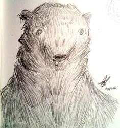 have a bear