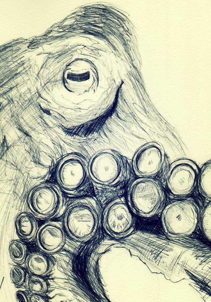drawing challenge sea creature by RyuzatoMayakashi