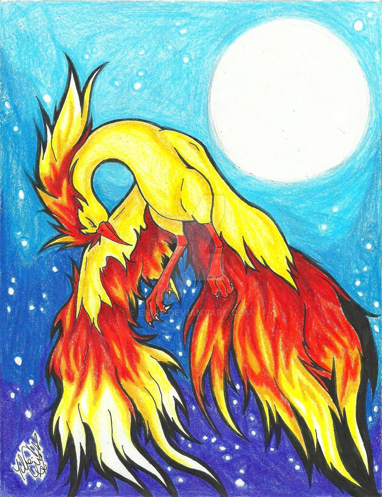 Fire Night by Enixe