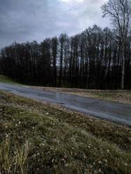 Road in village by Zebra072