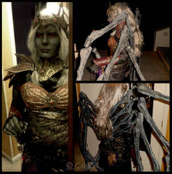 Lolth Costume 1