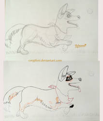 Corgi, Flitt progress drawings