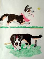 Flitt complete drawing