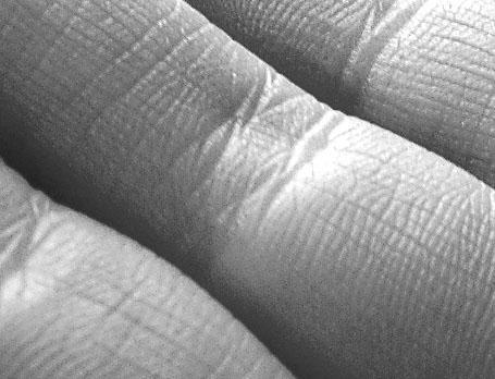 finger landscape by ash-kylie