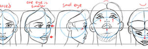 Head Tutorial for Article