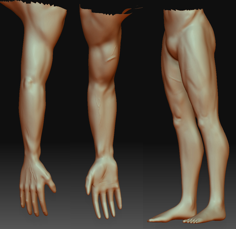 3d arm and legs by Skull-Samurai