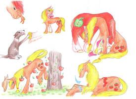 Applejack's timeline by Dawn22Eagle