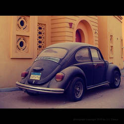 Dusty Beetle by Docca