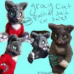 Gray cat partial for sale VIDEO