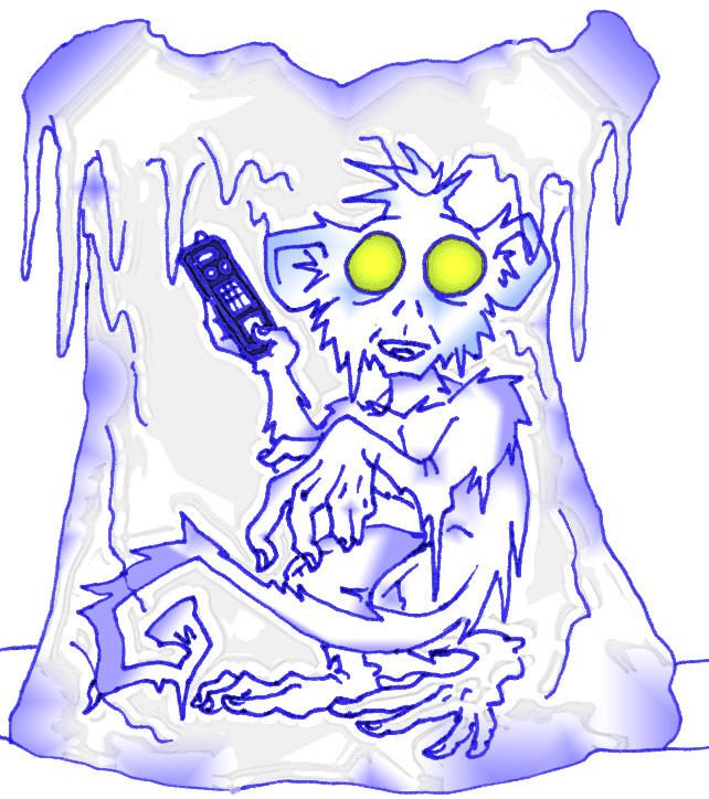 frozen_monkey.jpg