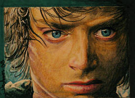 Frodo by DavidDeb