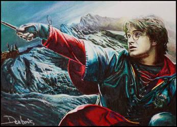 Triwizard Champion by DavidDeb