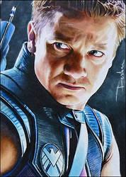 Hawkeye by DavidDeb