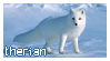 Arctic Fox Therian Stamp by rotterdamterror