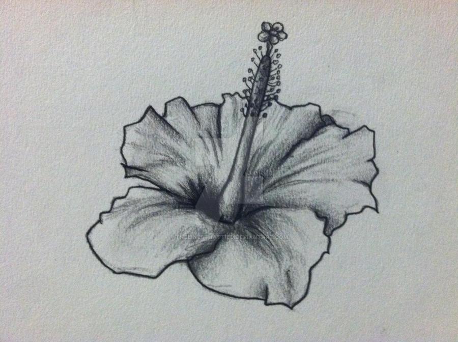 9b0eeb1ebcf08 Hibiscus Flower Tattoo Design by thelinesthattied on DeviantArt