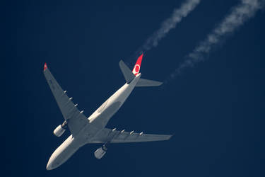 A332 Turkish - TC-JNA - THY5 [IST-ORD]