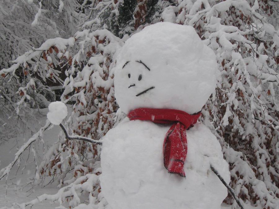 +snowmen+prophets+of+doom