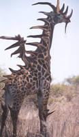 Dragon-Giraffe Hybrid