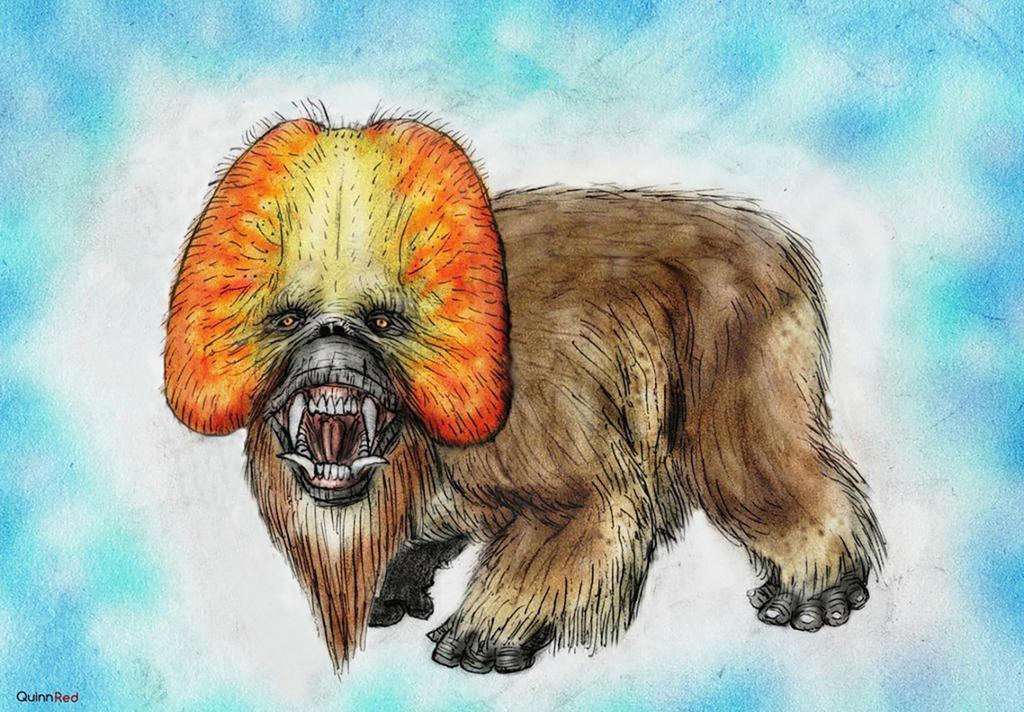 Orangutops by Quinn-Red