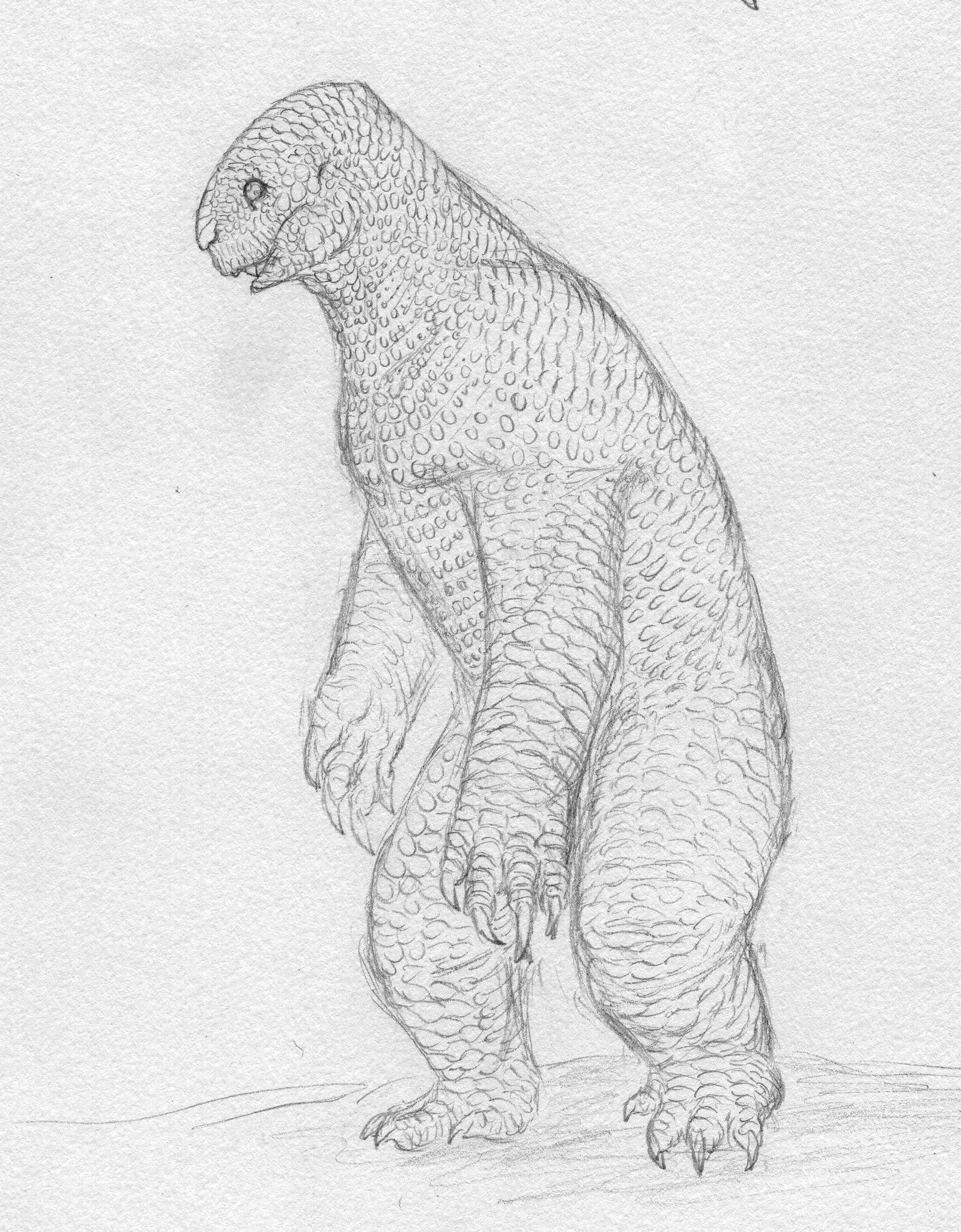 Quick sketch: Scaley Bear by Quinn-Red on DeviantArt