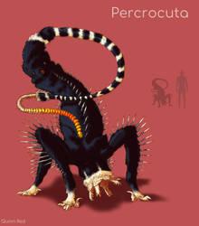 Radialmorph : Percrocuta