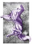 Borzoi of my purple dreams