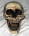 Sawy-stock:Skull