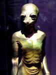 NCMNS Alien by LDFranklin